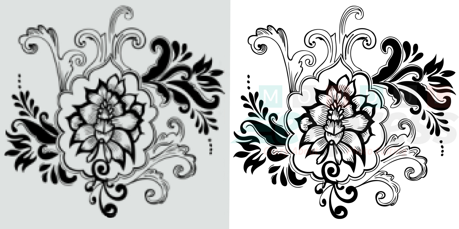 Raster To Vector